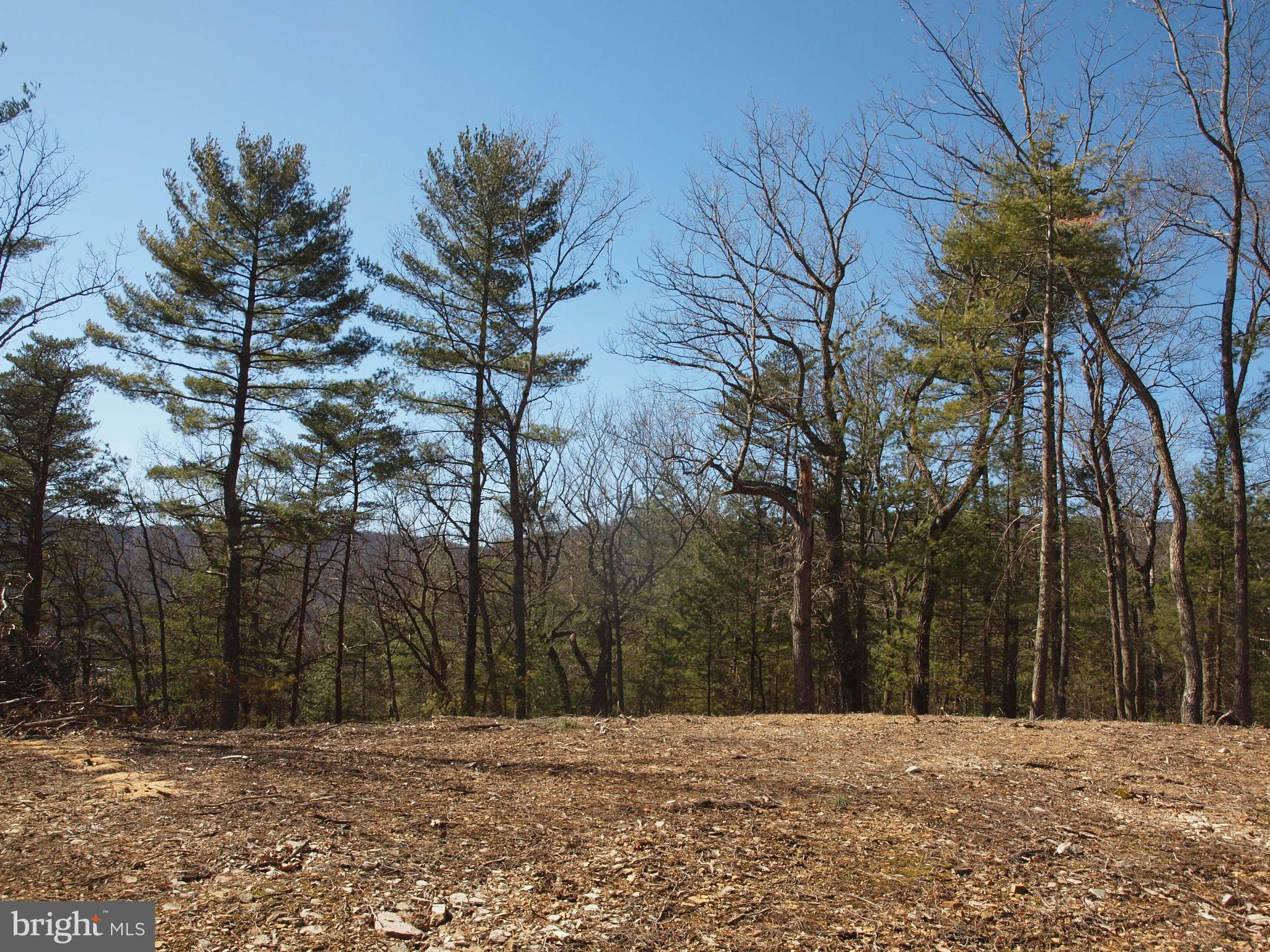 REDDISH KNOB ROAD PARCEL #2, SUGAR GROVE, WV 26815