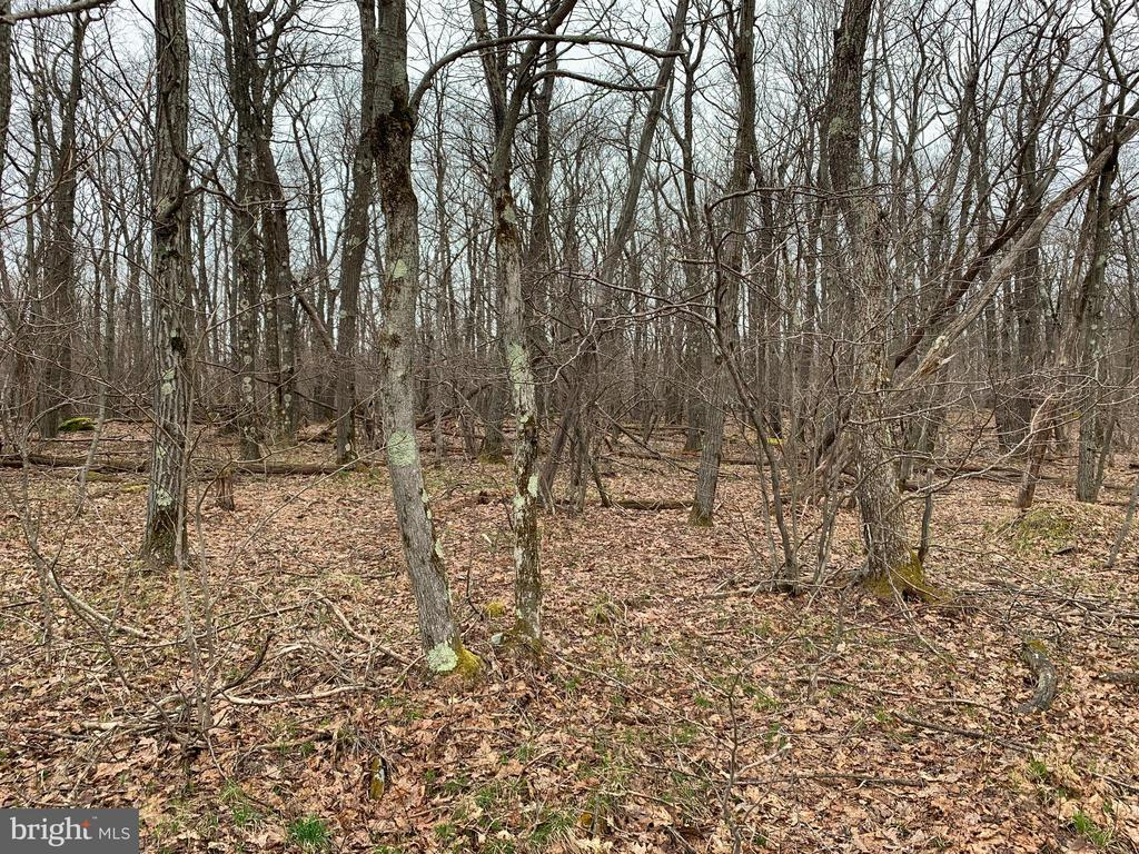 Lot 150 Shawnee View Rd, Central City, PA 15926