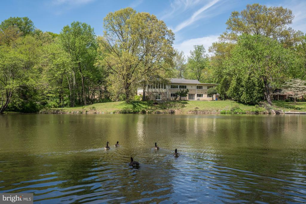 This traditional-style home boasts large scale spaces for grand entertaining. The two-story living room has a balcony providing the perfect set-up for in-home concerts and parties. When not entertaining, you'll probably never want to leave comfort of the large sunroom that is bathed in natural light and offers sweeping views of the lake and nearby Swift Island. Located on a large, flat lot that is adjacent to a Lake Barcroft community  garden, the park-like setting is perfect spot to enjoy nature. All this only 8 miles to Washington, DC and Amazon's Headquarters at National Landing in Arlington. Note - the lower level has an unfinished spa wing - great opportunity to finish it the way you want!