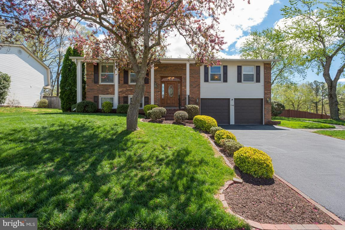 Beautifully updated 4 bedroom home on incredible corner lot! Gorgeous high quality home, carefully maintained and loved throughout!  Over 2,000 sq ft featuring high end kitchen remodel with granite counters, decorative stone & glass tile backsplash, contemporary style self-closing cabinets with interior & under cabinet lighting, Jenn Air stainless steel appliances, maple hardwood floors, and recessed lighting. Large living room with decorative crown molding. Master bedroom features access to gorgeous remodeled bath! Master bedroom and dining room both have Pella sliding glass doors leading to huge private deck and backyard! Full bath on upper level features granite vanity, oversized tub with tile surround, and tile flooring. 2 spacious secondary bedrooms also on upper level. Downstairs you will find a family room with gas fireplace, a spacious 4th bedroom, full bathroom with walk in shower, and kitchenette. Lower level could be used as an in-law suite - designed for access without steps! Huge flat backyard is fully fenced and features a brick paver patio and 2 sheds. Oversized 2 car garage and large driveway. Newer furnace and heat pump. Windows on upper level replaced in 2015. Walk to metro bus stops. Minutes to VRE, Metro, FFX parkway, 95/395, and Springfield Town Center. West Springfield pyramid. Beautiful home and fantastic location - WELCOME HOME!