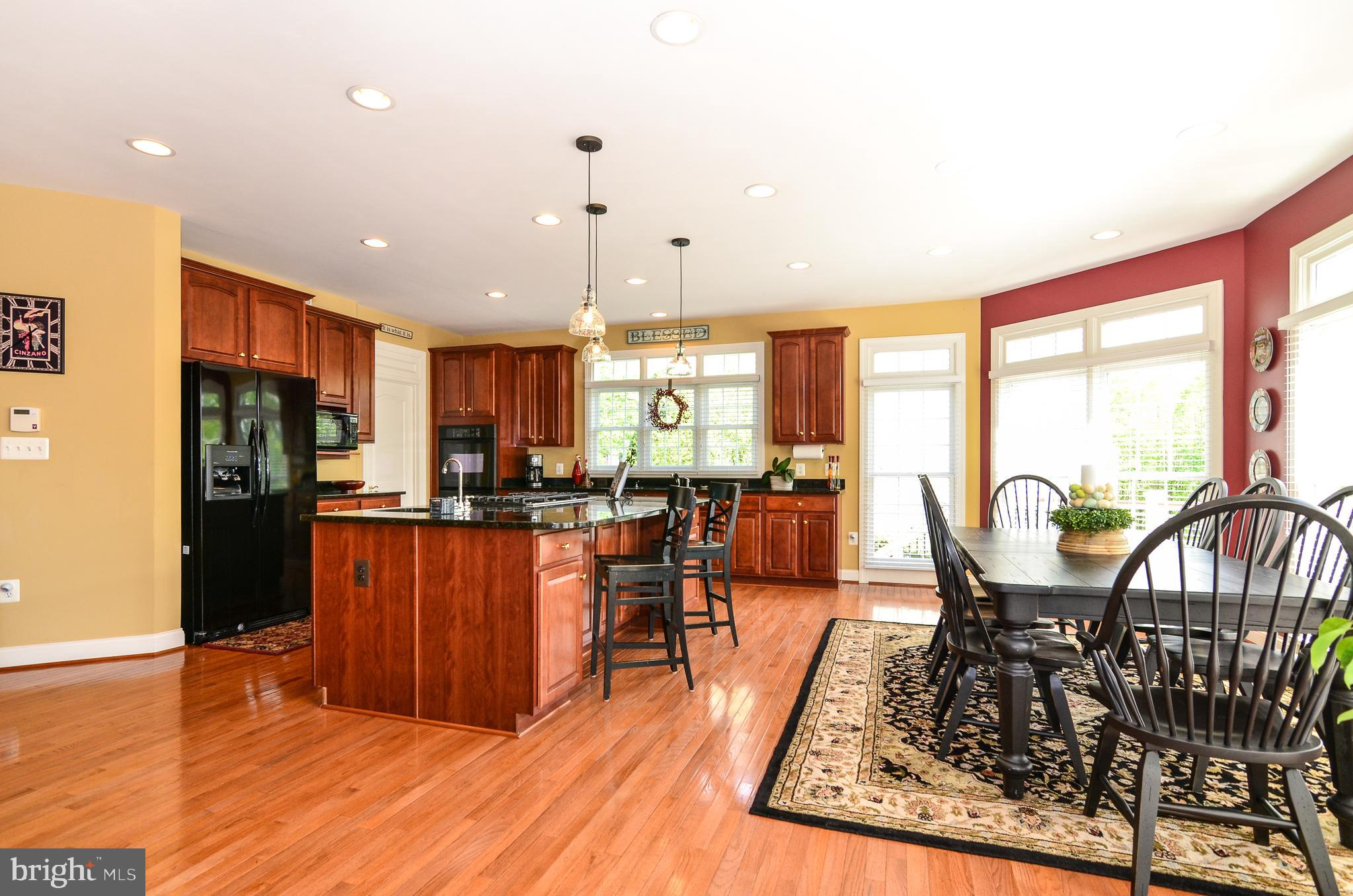 24202 HEATHER FIELD COURT, Aldie, 20105 | The Dave and Dave Team