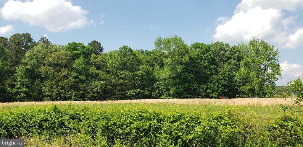 Partially wooded 2.5+/- acre lot outside of Cambridge. Perc approved.