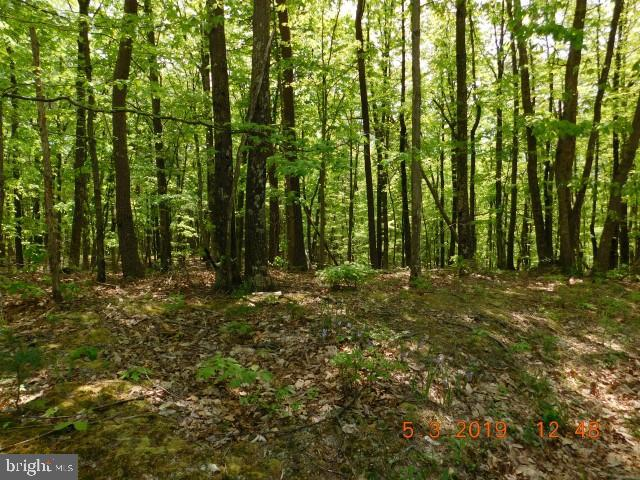 Lot 28 NORTH RIVER BEND SD, DELRAY, WV 26714