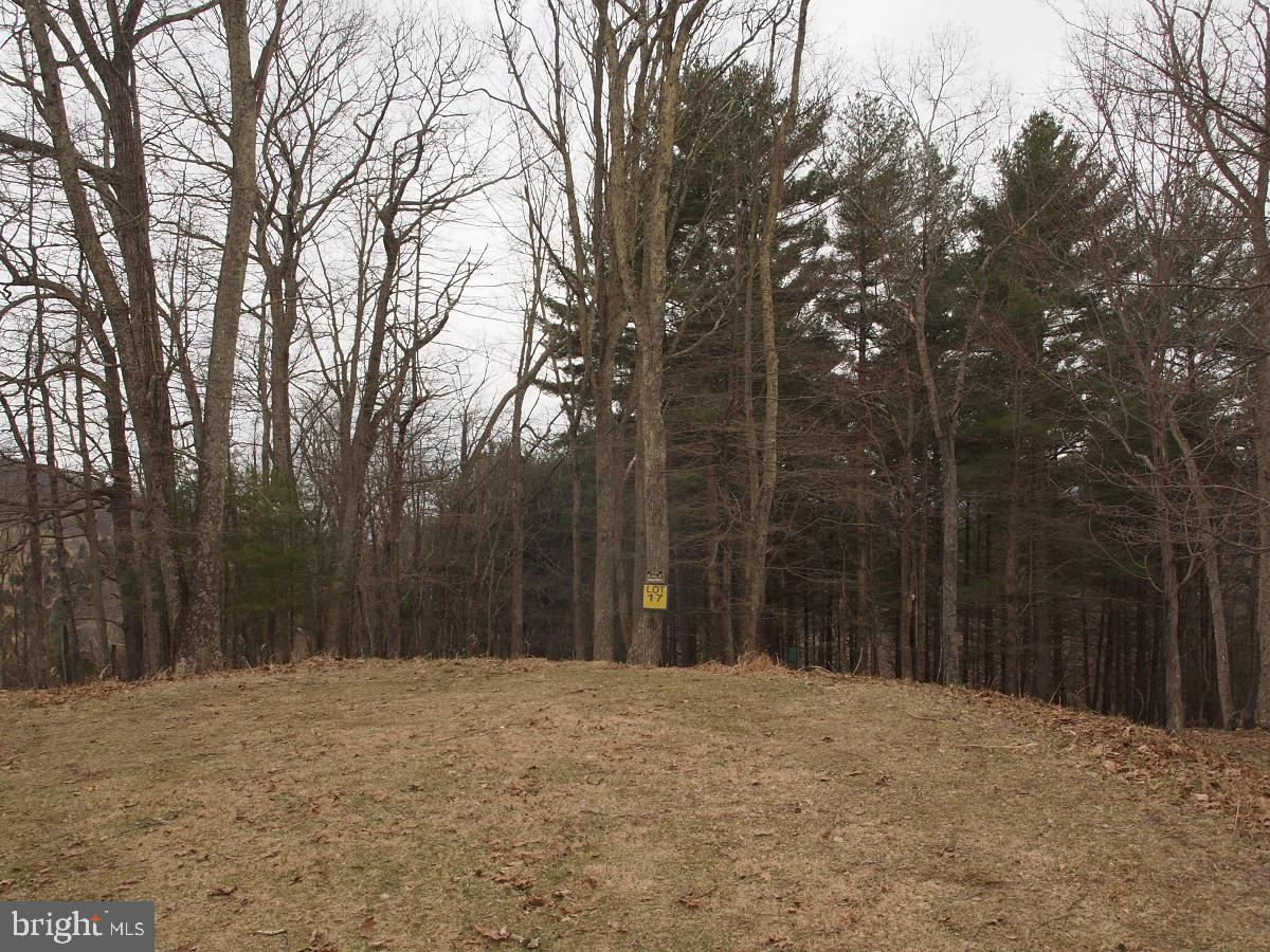 SUGAR GROVE ESTATES-MT HALL RD LOT 17, SUGAR GROVE, WV 26815
