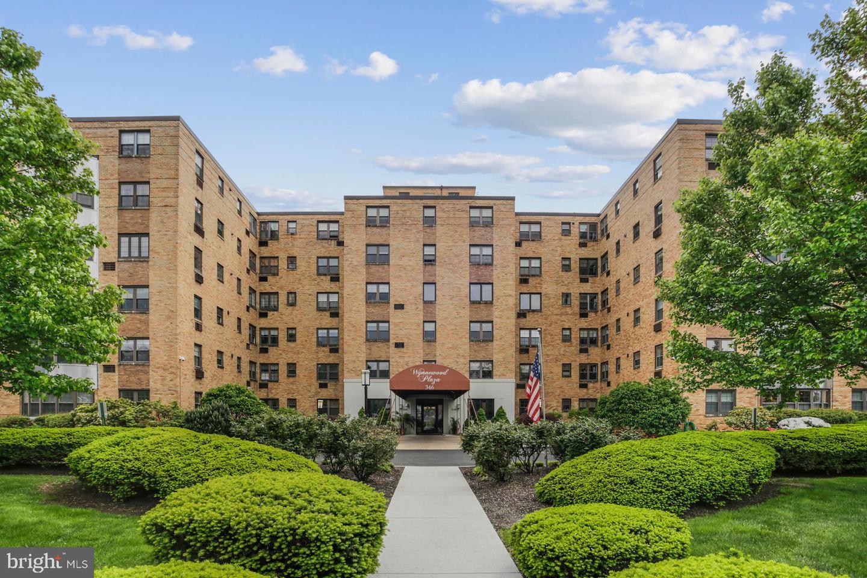346 E Lancaster Avenue #215 Wynnewood, PA 19096