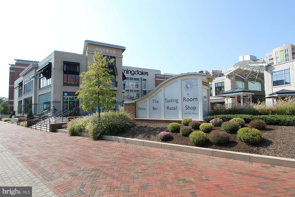 4620 N Park Ave #1611e, Chevy Chase, MD 20815