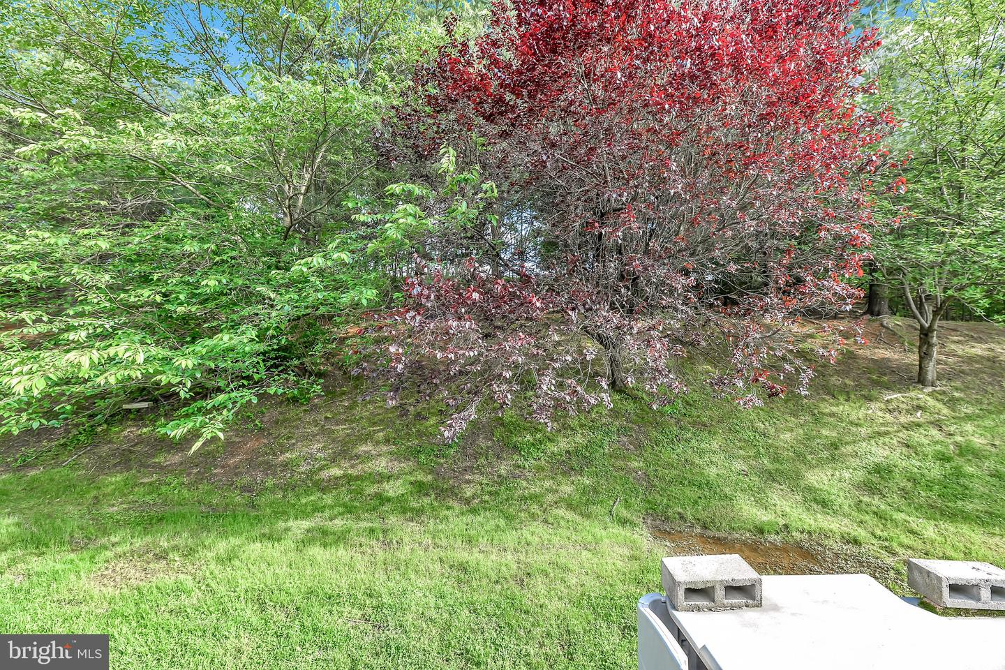 7995 Brightmeadow Court, Ellicott City, MD, 21043 - Real