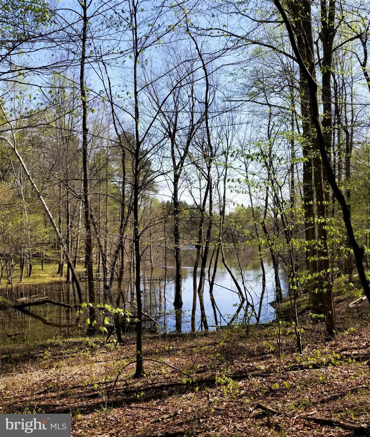Lot 1D WILHOITS MILL ROAD, BARBOURSVILLE, VA 22923