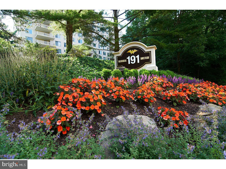 191 Presidential Boulevard #101 BS 17 Bala Cynwyd, PA 19004