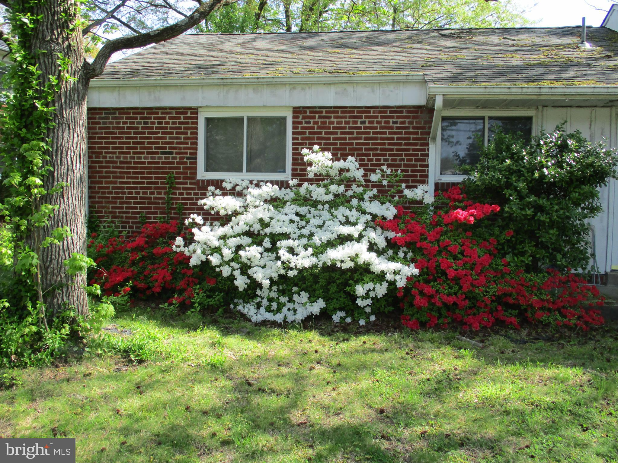 6701 FOREST HILL DRIVE, UNIVERSITY PARK, MD 20782