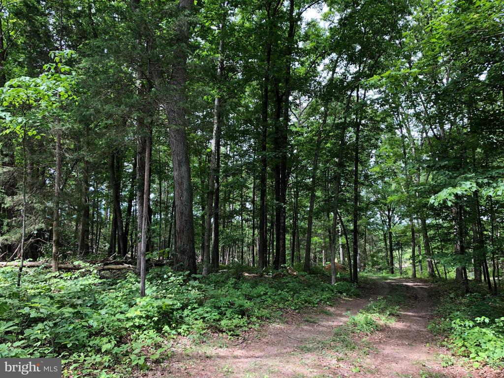 Lot 21 Creek Bend Court, Stephens City, VA 22655