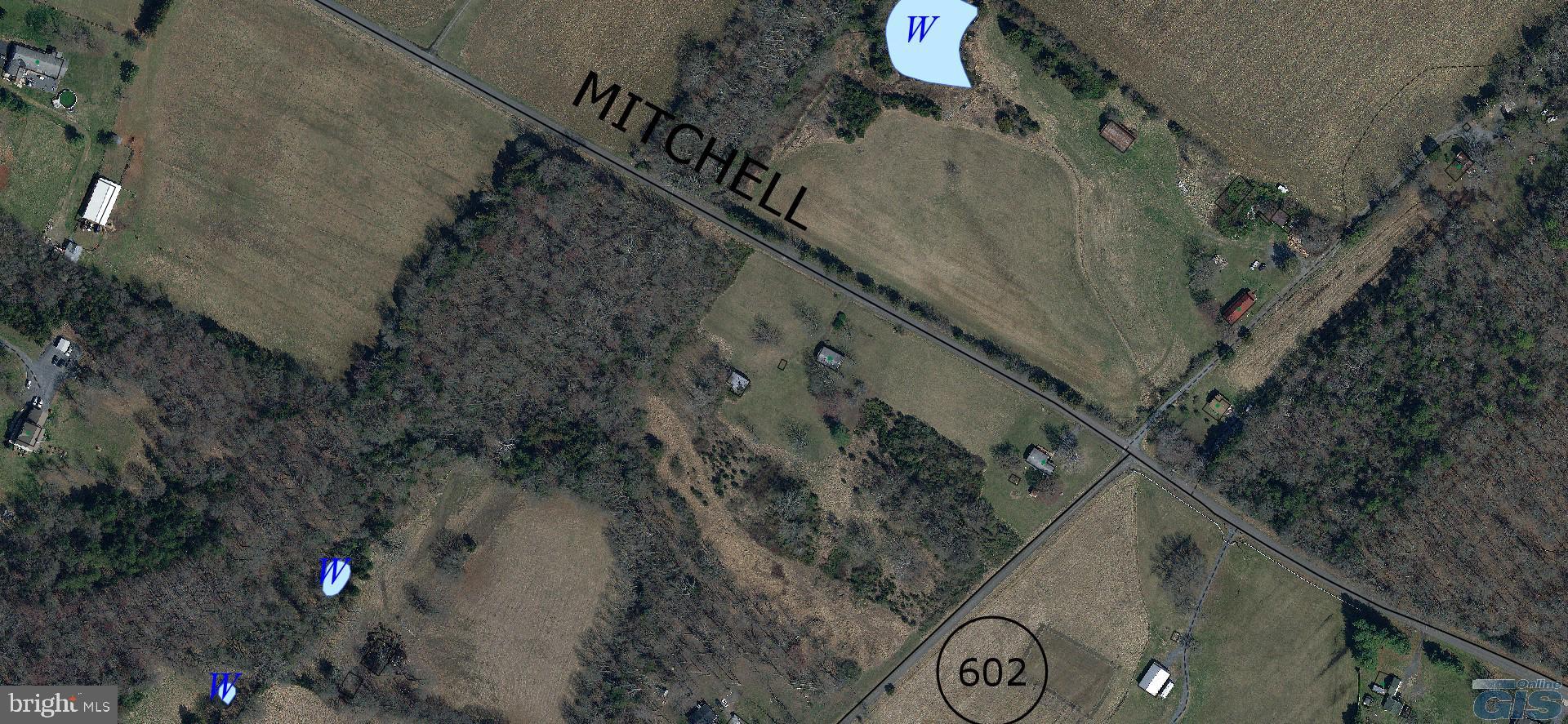 MITCHELLS, MITCHELLS, VA 22729
