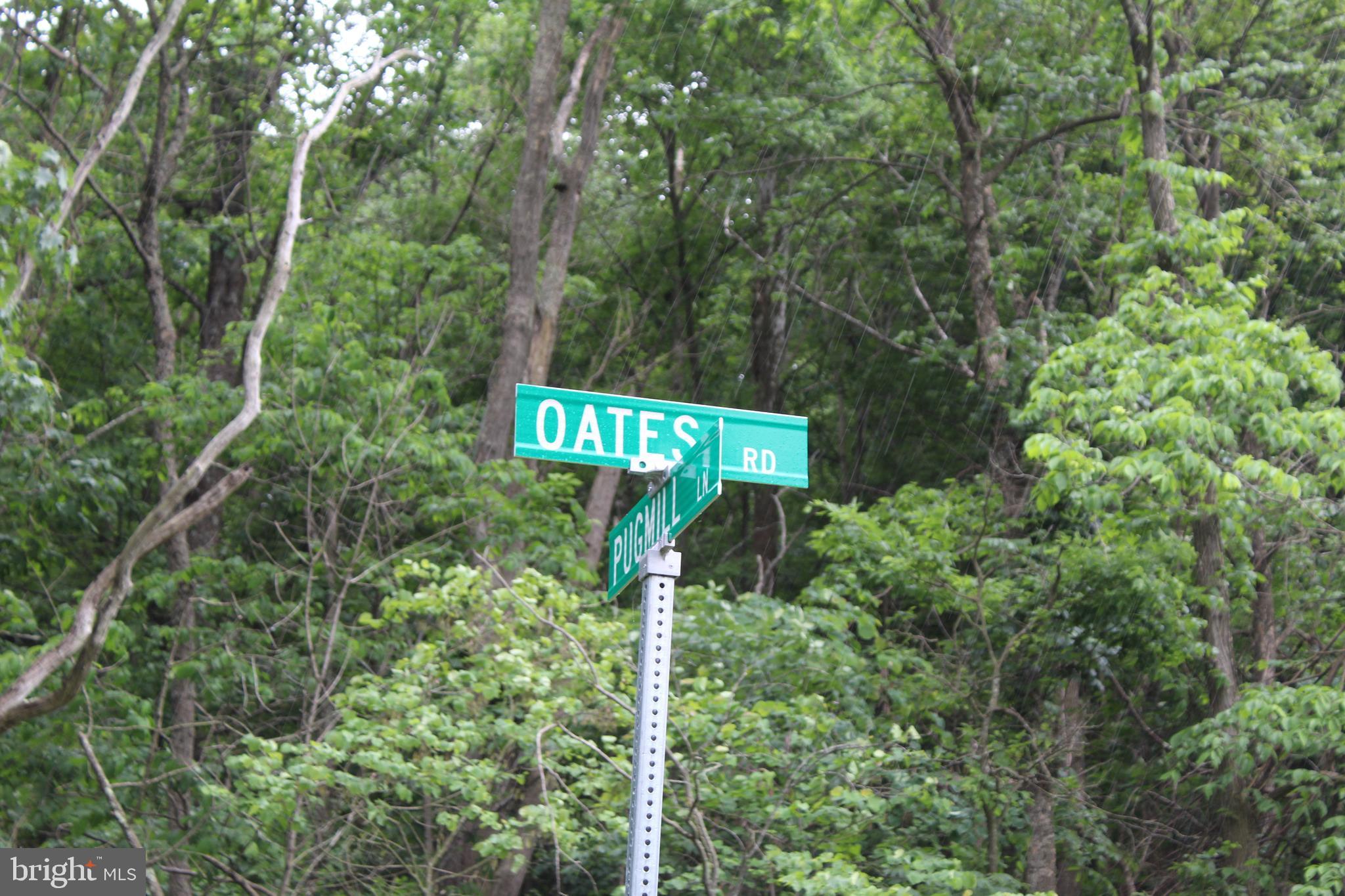 493 OATES ROAD, STAR TANNERY, VA 22654
