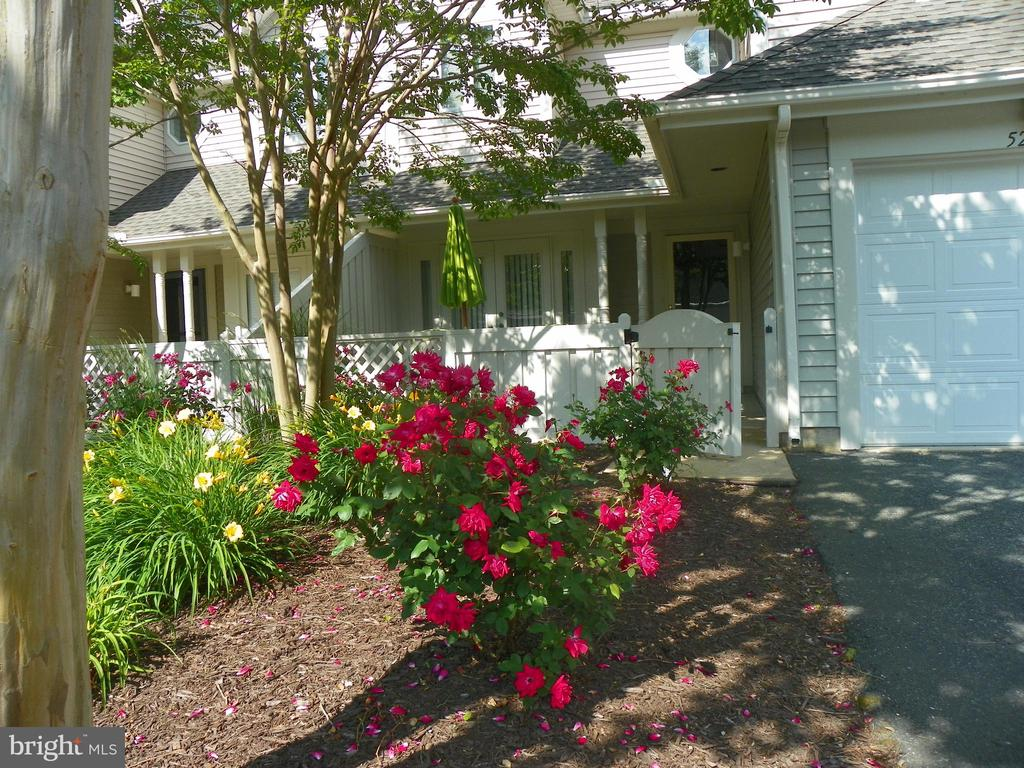 33451  CANAL COURT  52039, Bethany Beach, Delaware