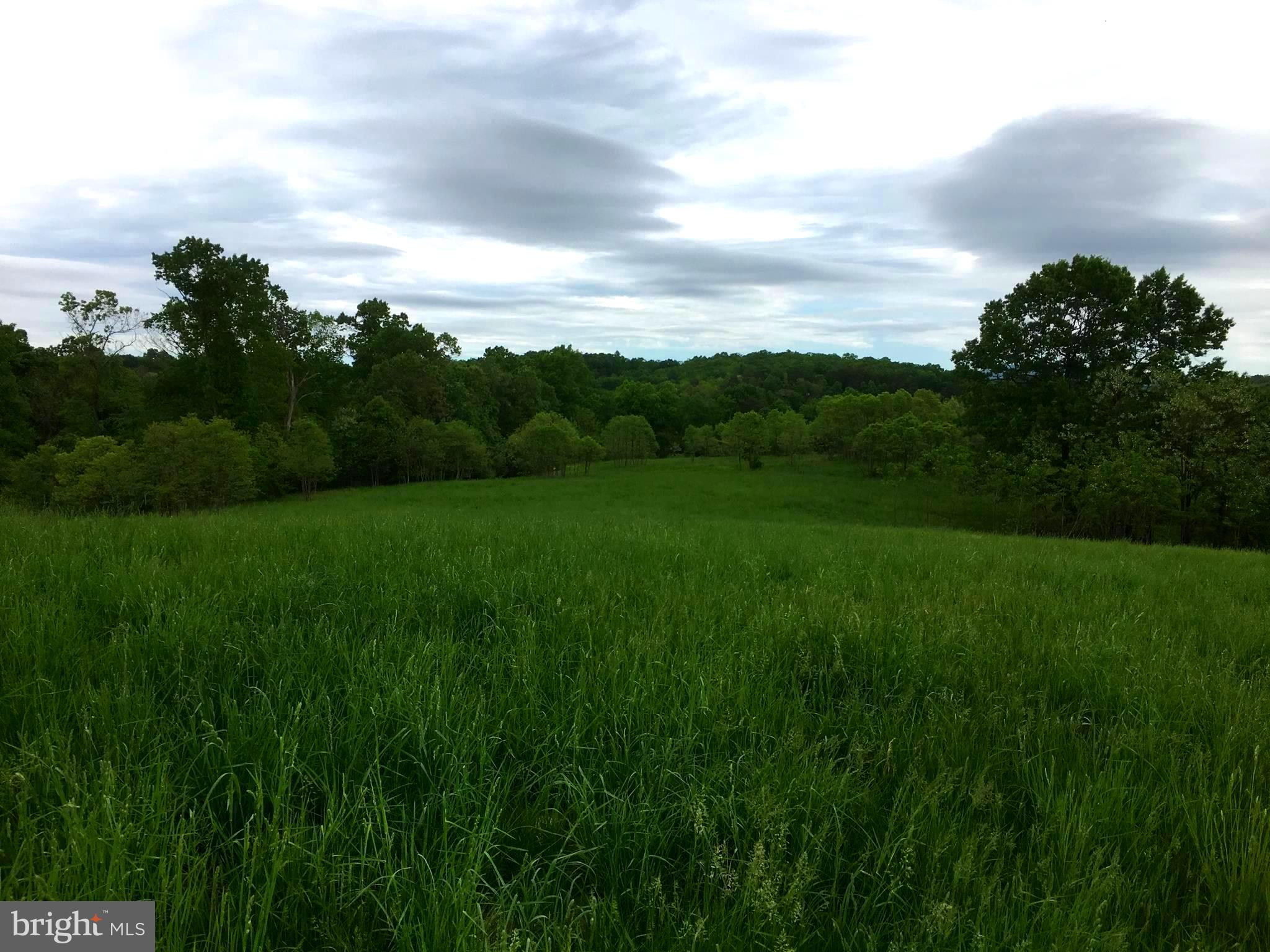 49 53 ACRES PROCESS, Hedgesville, WV 25427 $385,000 www
