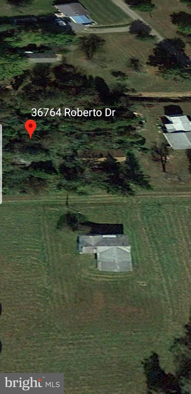 36764 ROBERTO DR, BUSHWOOD, MD 20618