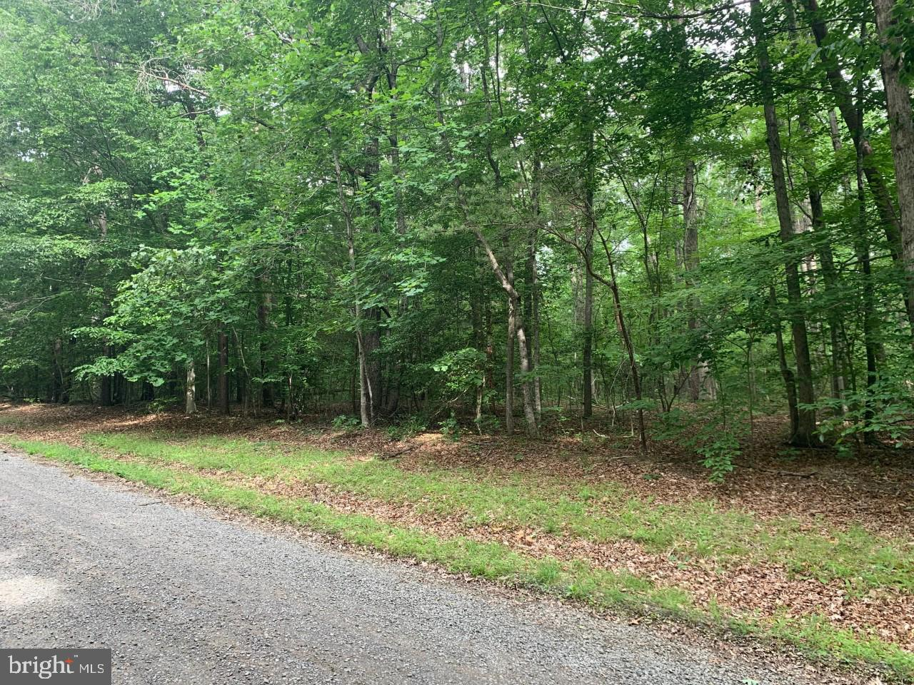 Lot 39- Gold Rush Ln. GOLD RUSH LN, GOLDVEIN, VA 22720