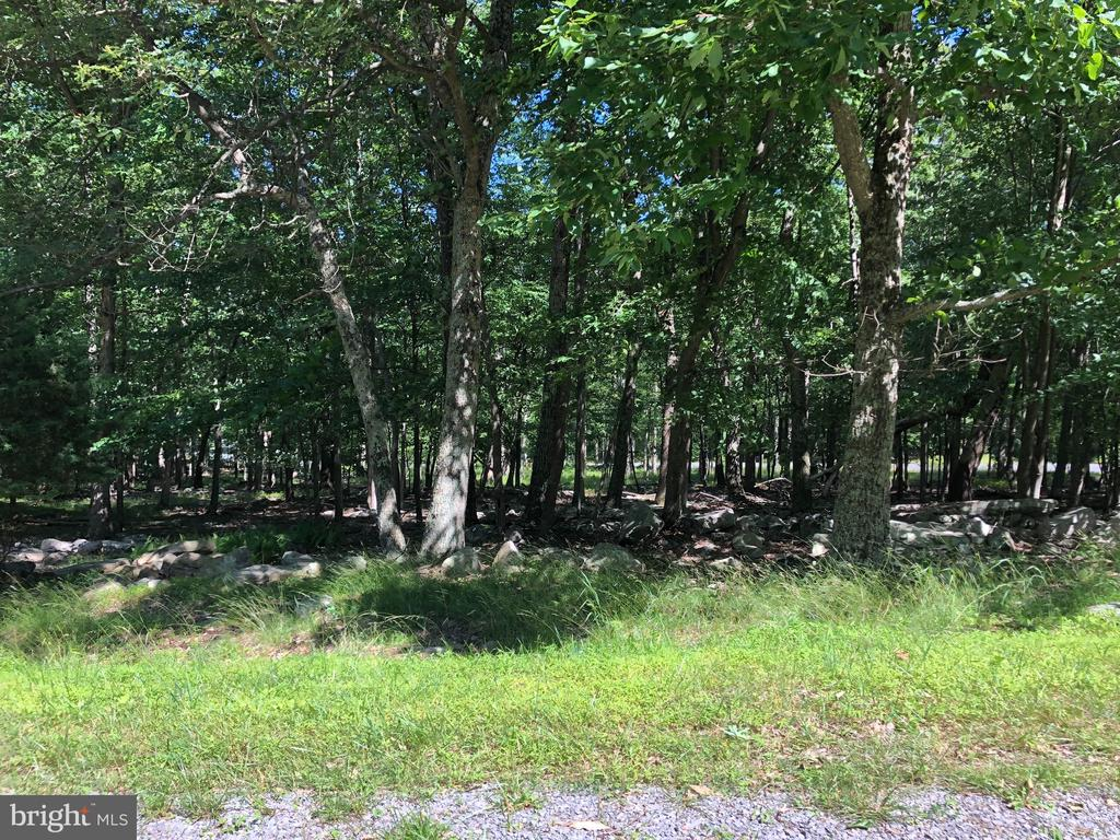 Nice Building Lot - Subdivision features paved road, under ground utilities and protective covenants.   3.00 wooded acres.   Just minutes from Cacapon State Park and Berkeley Springs.  Common lot in subdivision adjoins Cacapon State Park.