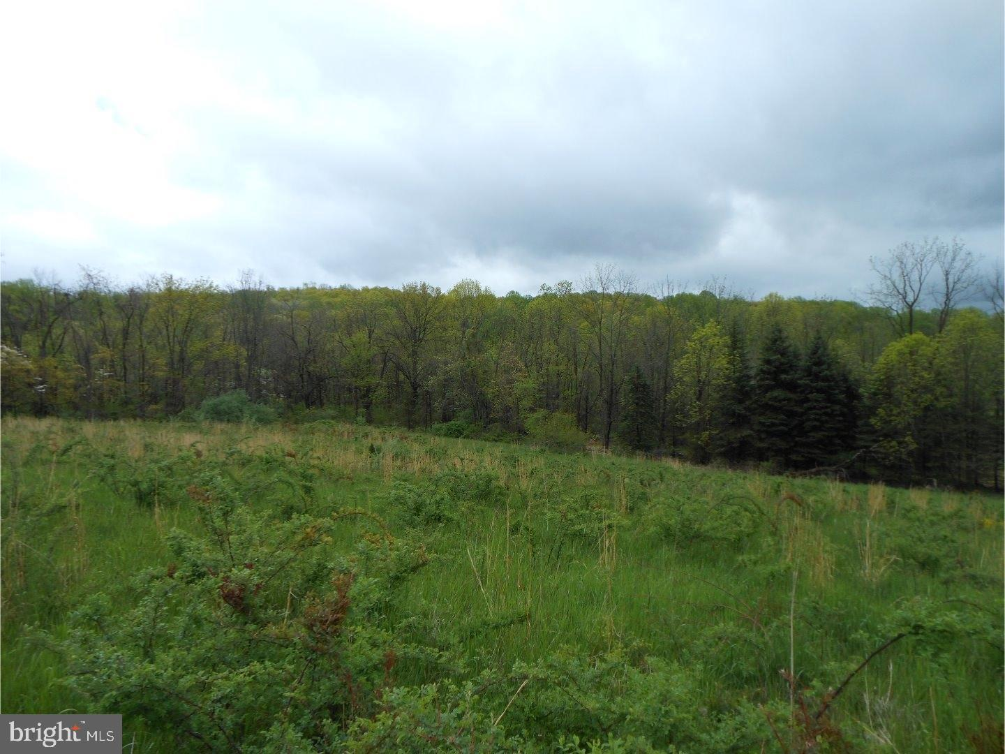 Lot #3 CROW ROAD, HEREFORD, PA 18092