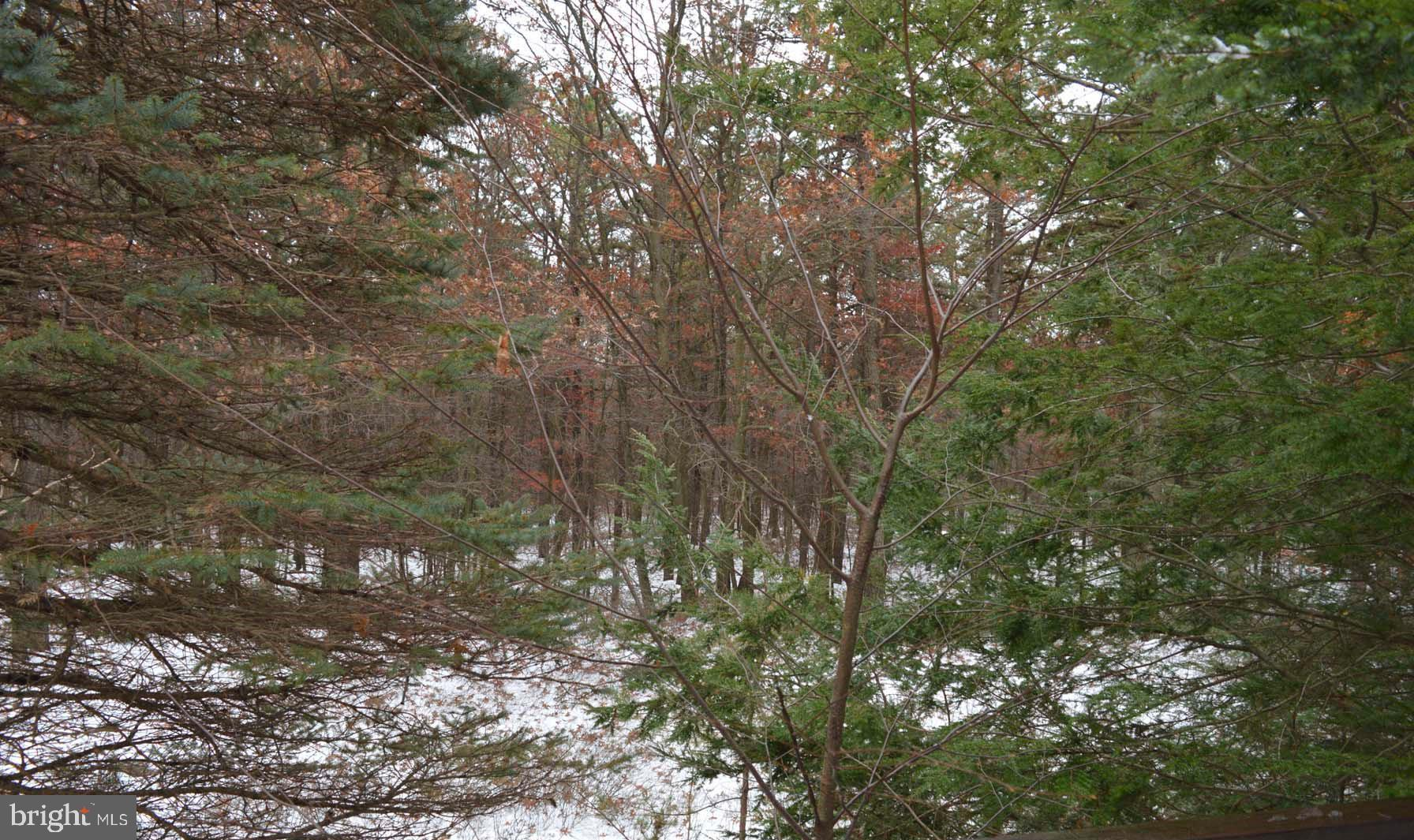 Lot A2 BROADVIEW DRIVE, JIM THORPE, PA 18229