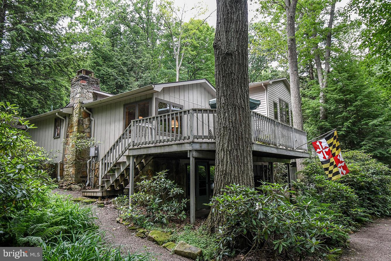 630 STATE PARK ROAD, SWANTON, MD 21561