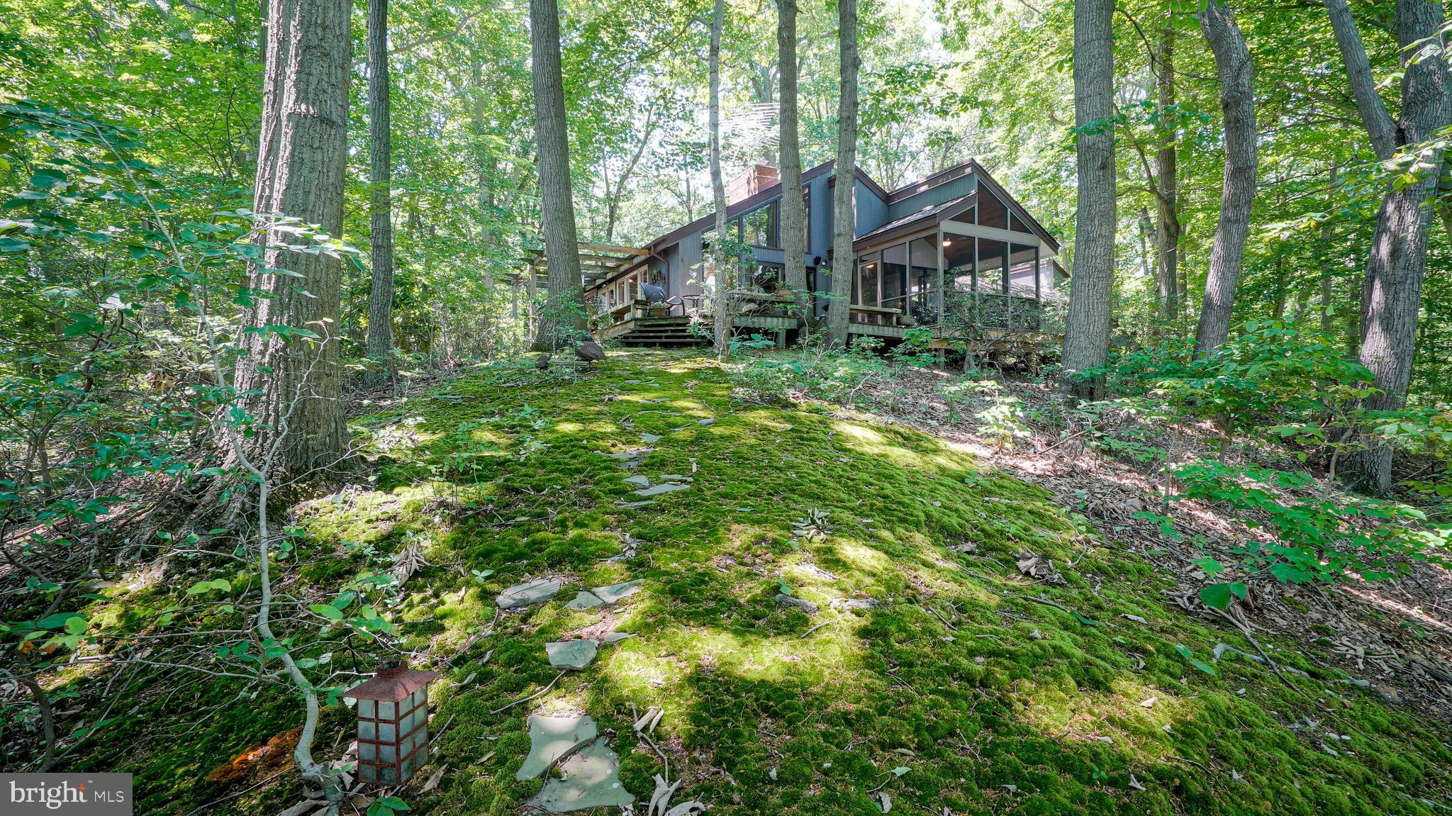 24284 MACS LANE, WORTON, MD 21678