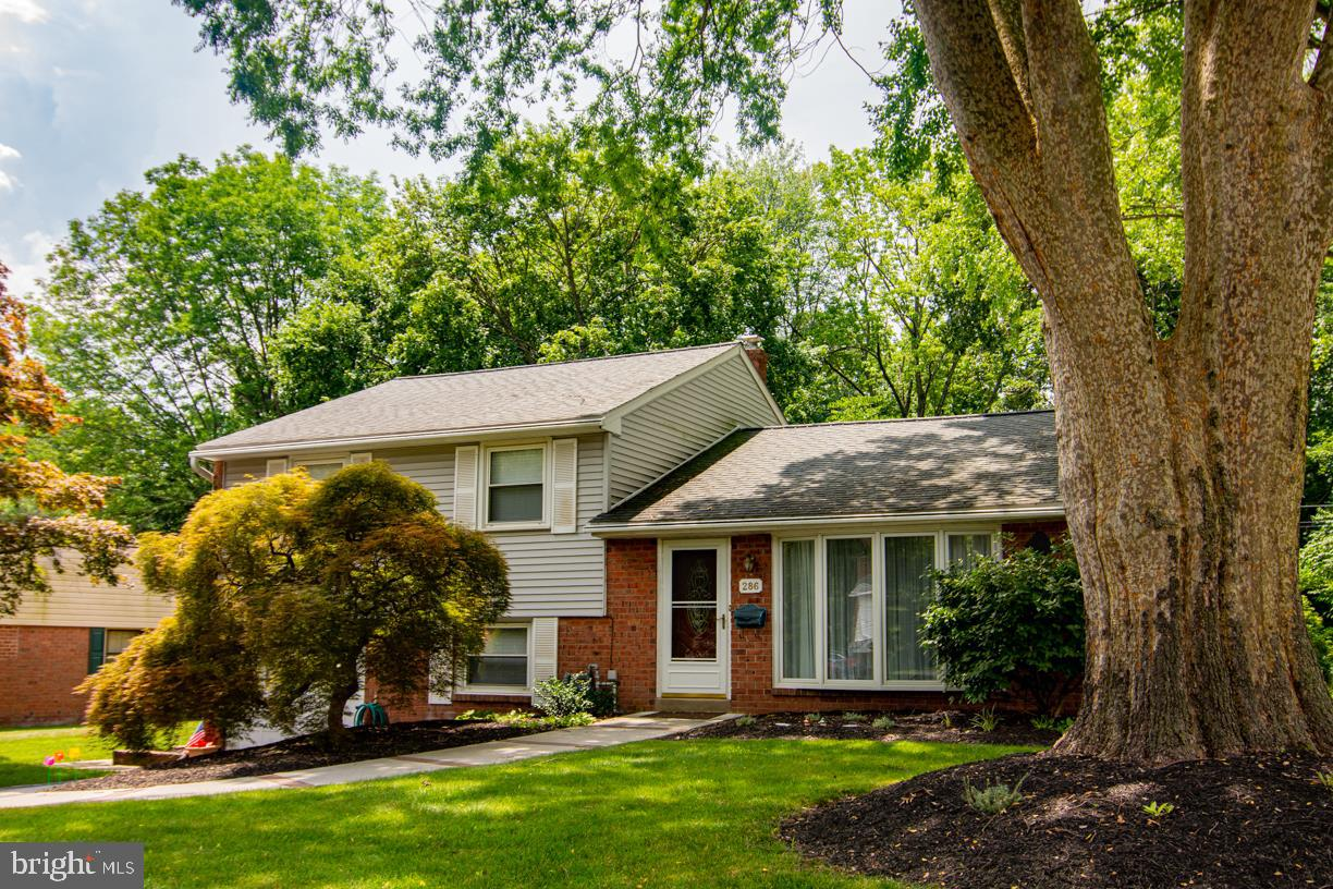 286 Lewis Road Springfield, PA 19064