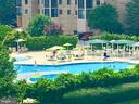 5903 Mount Eagle Dr #1103