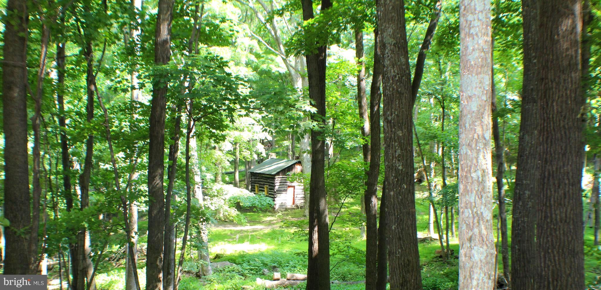 1079 LITTLE MOUNTAIN ROAD, CABINS, WV 26855