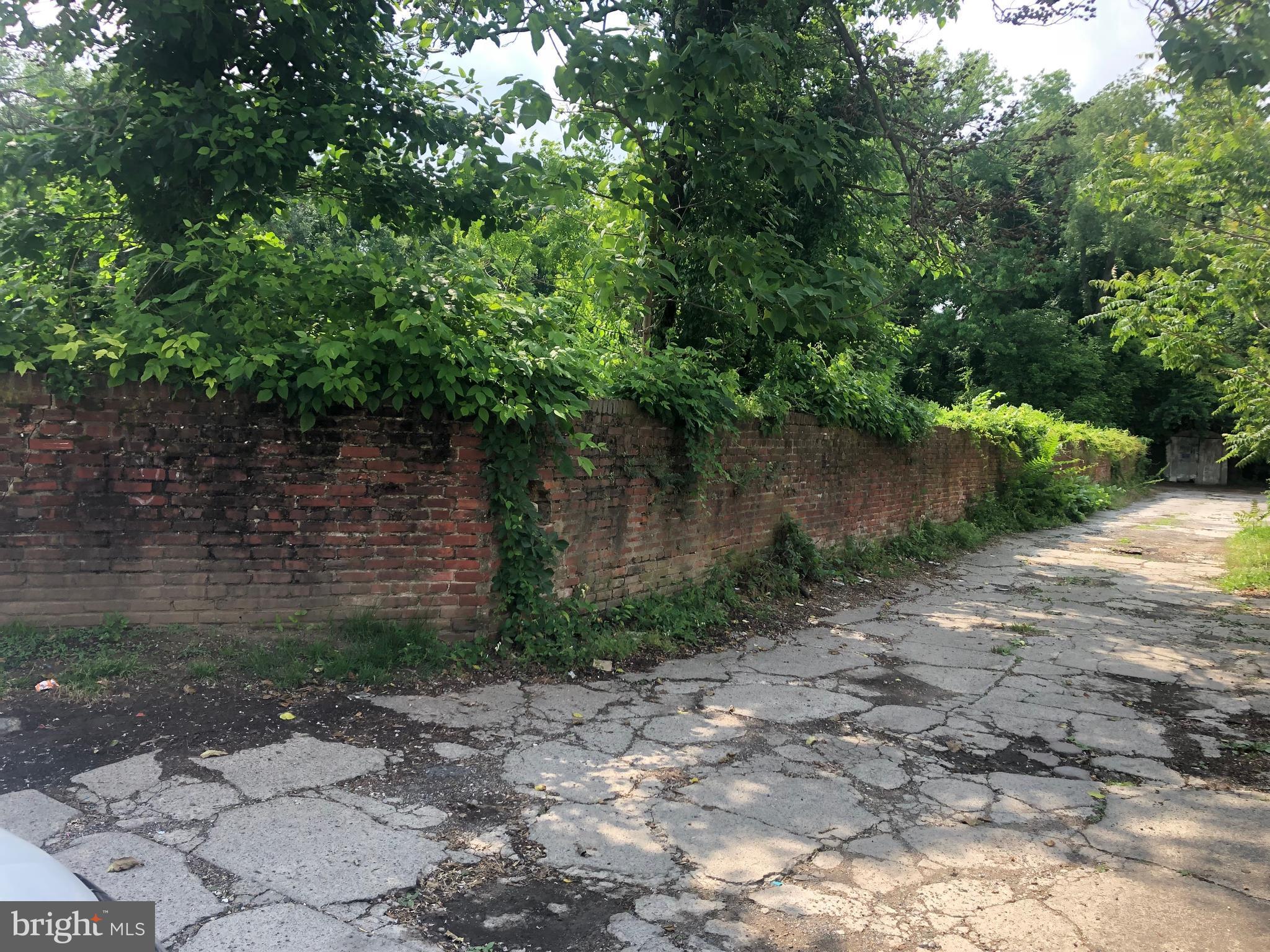 4646 Rear NAPLES STREET R, PHILADELPHIA, PA 19124
