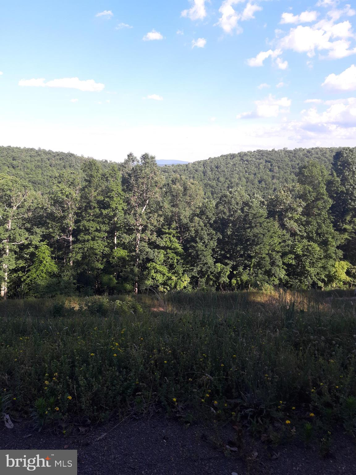 0 FOREST RIDGE TRAIL, FORT VALLEY, VA 22652