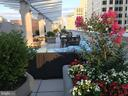12025 New Dominion Pkwy #412