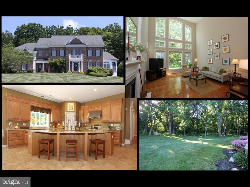 4303 SARATOGA SPRINGS COURT, MIDDLETOWN, MD 21769