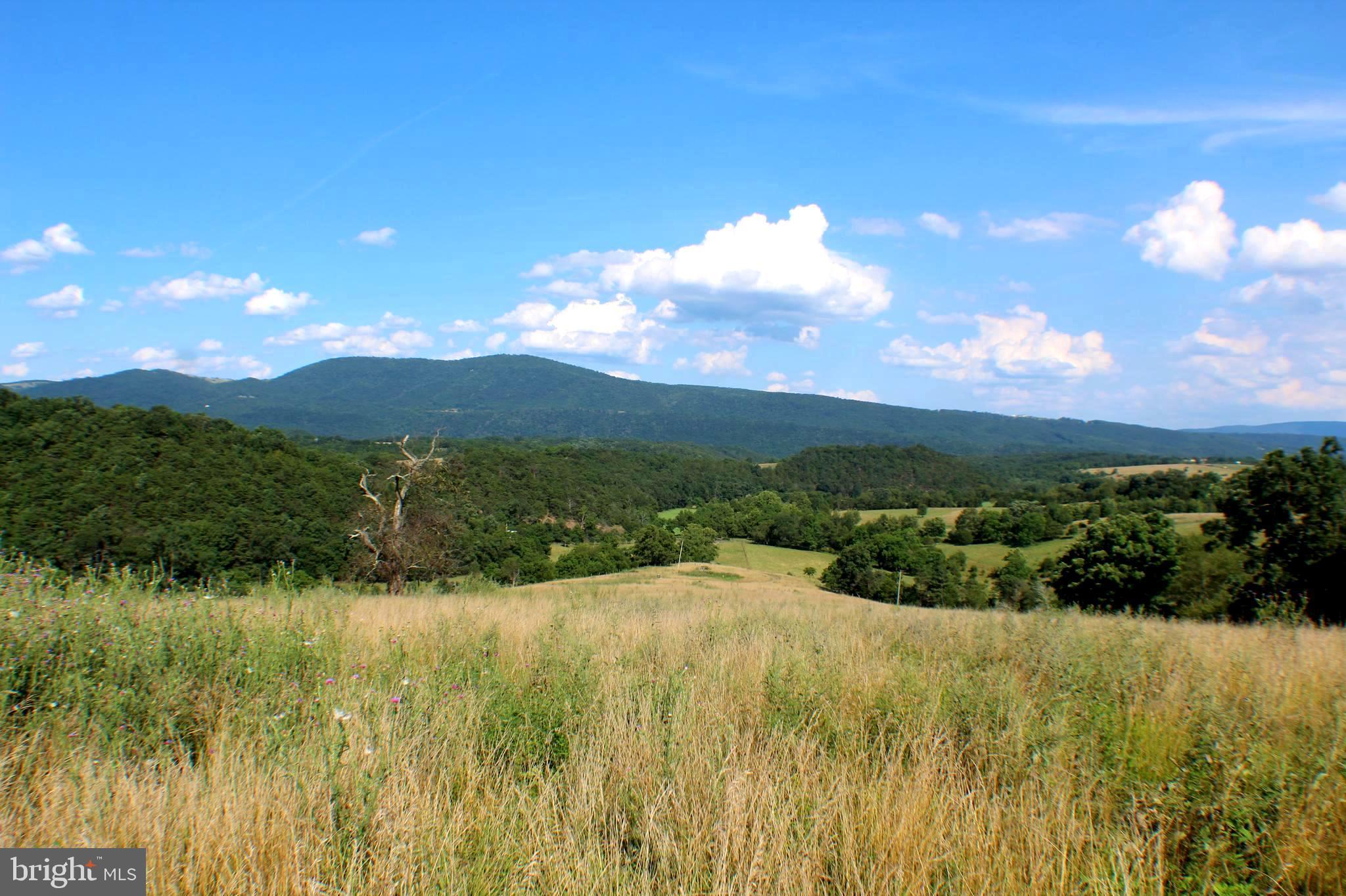 202.08 acres BRICK SCHOOL ROAD, MAYSVILLE, WV 26833