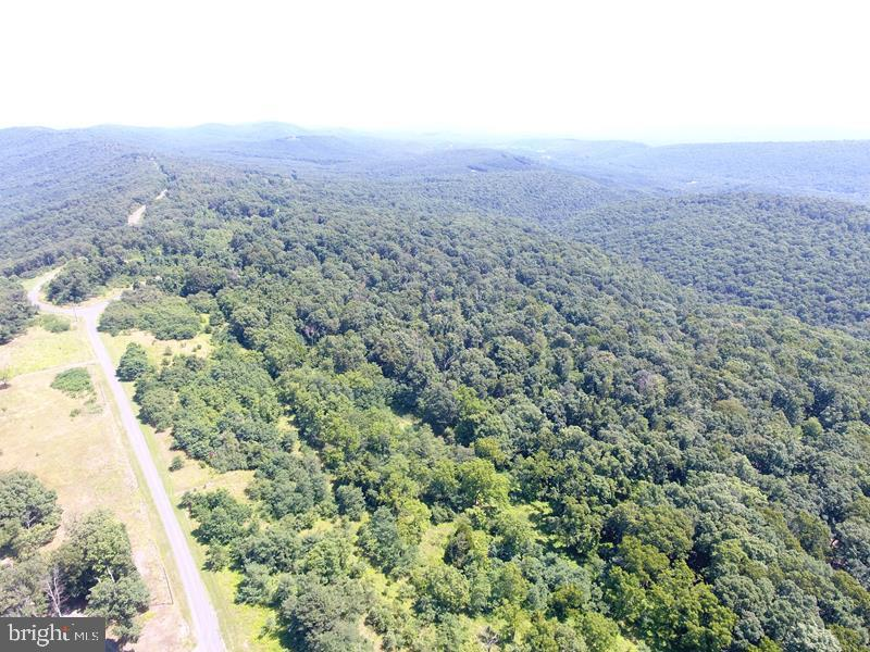 205 BLUFFS ON THE POTOMAC, SPRINGFIELD, WV 26763