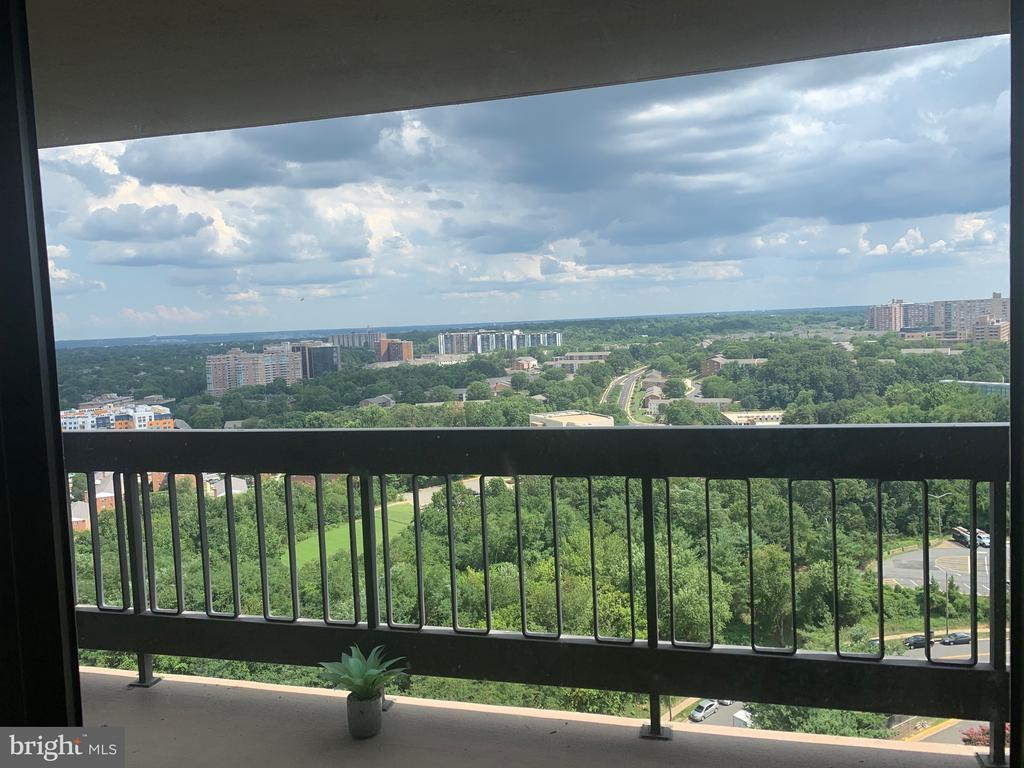 Falls Church Homes for Sale -  Panoramic View,  3705 S GEORGE MASON DRIVE  2009S