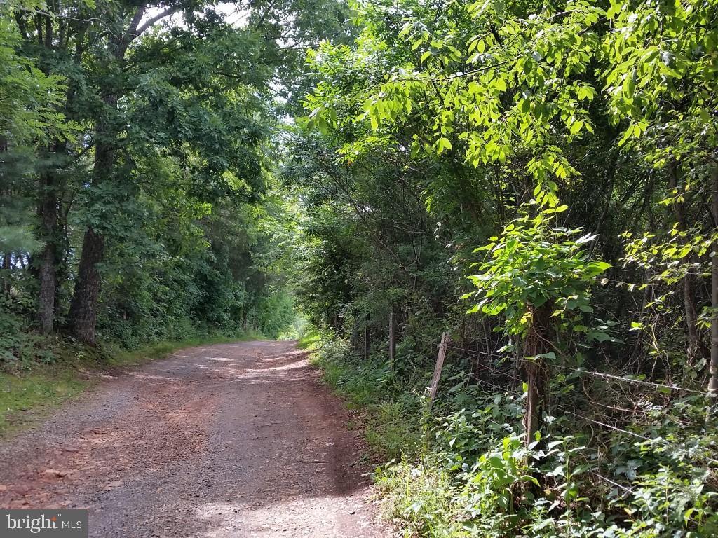 4110 Wild Deer Lane, North Garden, VA 22959