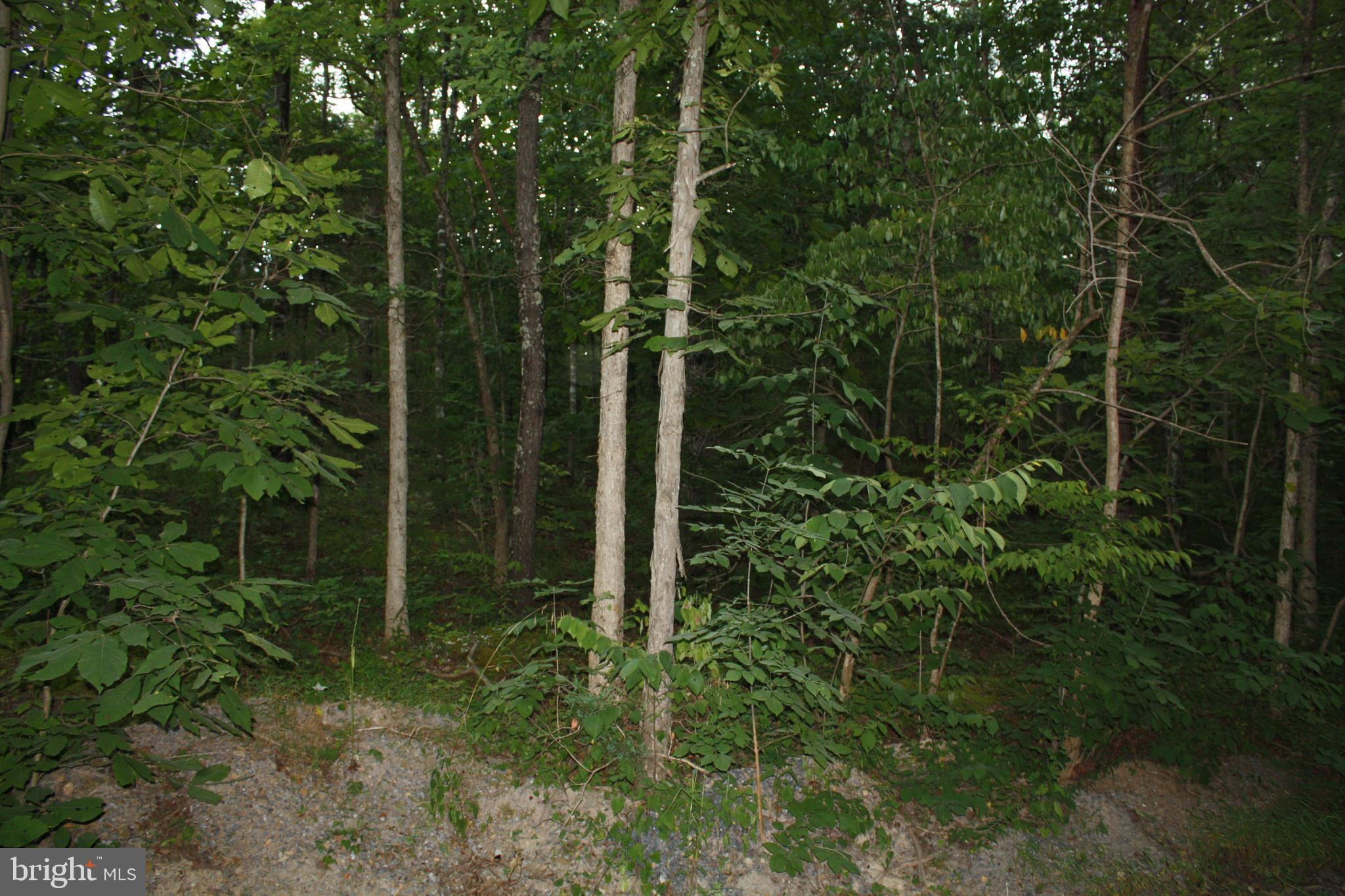 Lot #3 HUMMINGBIRD LANE, STAR TANNERY, VA 22654