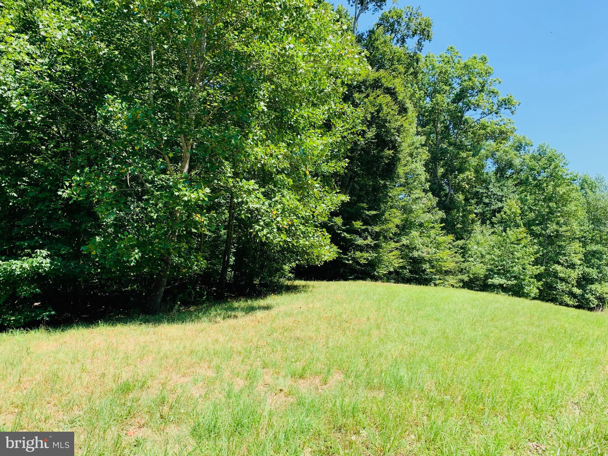QUIET WOODS LANE, PARTLOW, VA 22534