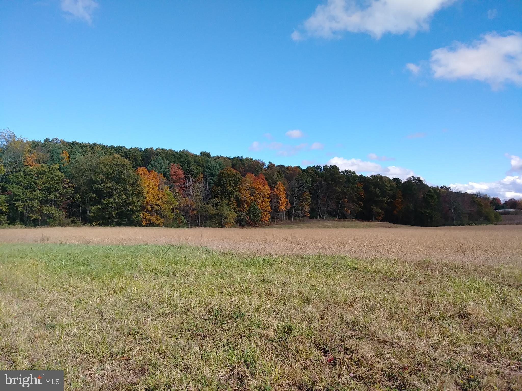 OPEN PLAINS ROAD, LITTLE ORLEANS, MD 21766