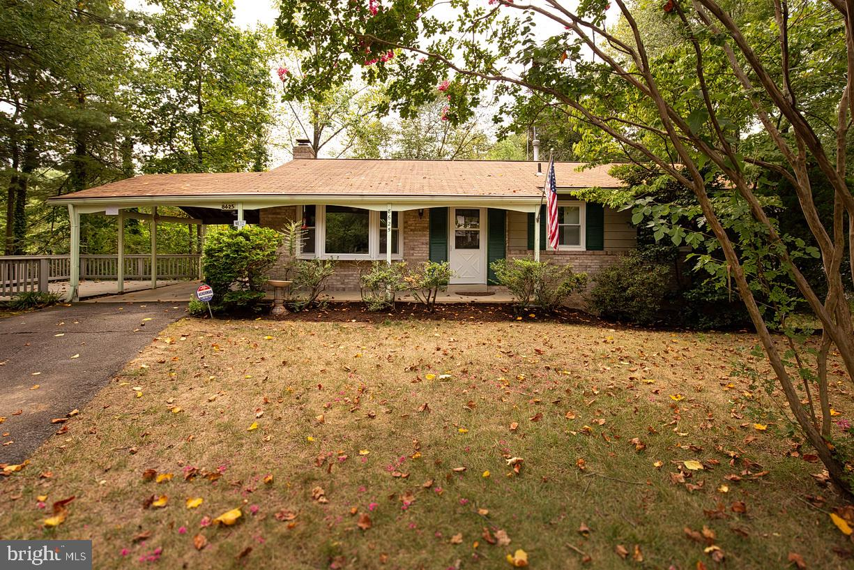 Sunny and spacious rambler in the heart of Springfield!  Updated to include fresh paint and new carpet throughout, along with newer Thompson Creek windows! This light filled home features an open concept dining and family room, spacious eat in kitchen and 4 bedrooms including master with its own private bath. Fully finished lower level with wood burning fireplace, opens to the new paver patio. Excellent location just minutes from the Fairfax County Parkway and in the highly sought after West Springfield HS Pyramid!