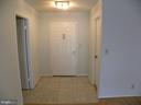 5903 Mount Eagle Dr #605