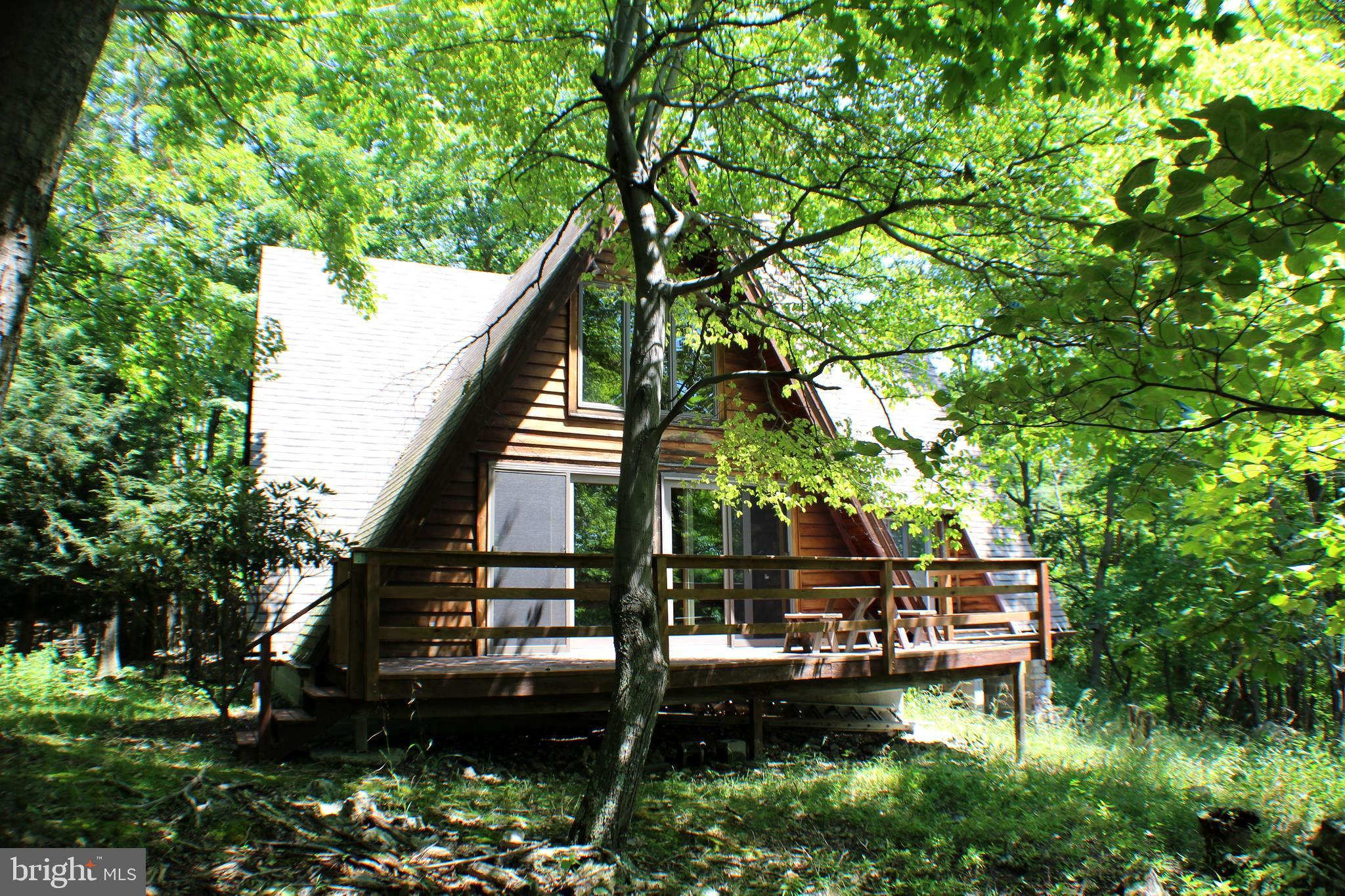 451 LITTLE MOUNTAIN ROAD, CABINS, WV 26855