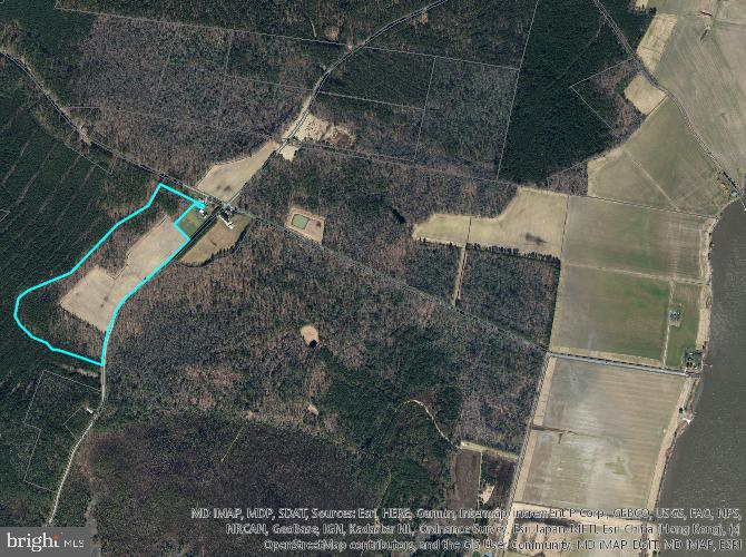 Both Tillable and Woodland, excellent deer and turkey hunting opportunity with easy access.