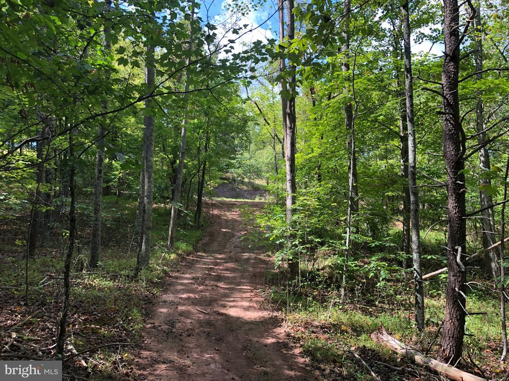 58.78 UNRESTRICTED ACRES - This all wooded parcel would be a great place for you to build, hunt, camp, ride your ATV or just enjoy nature.   Access road already roughed in through the property.  Located in the Southern end of Morgan County.   Have easy access to VA, Berkeley Springs and Cacapon State Park.