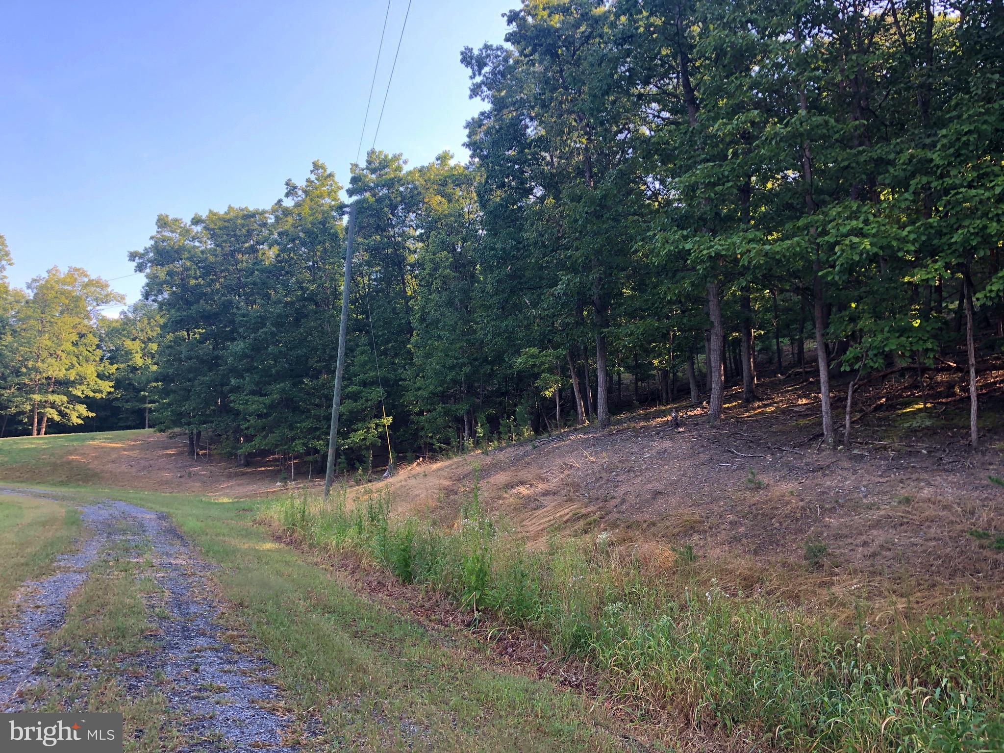 Moon Ridge Lane, Burlington, WV 26710