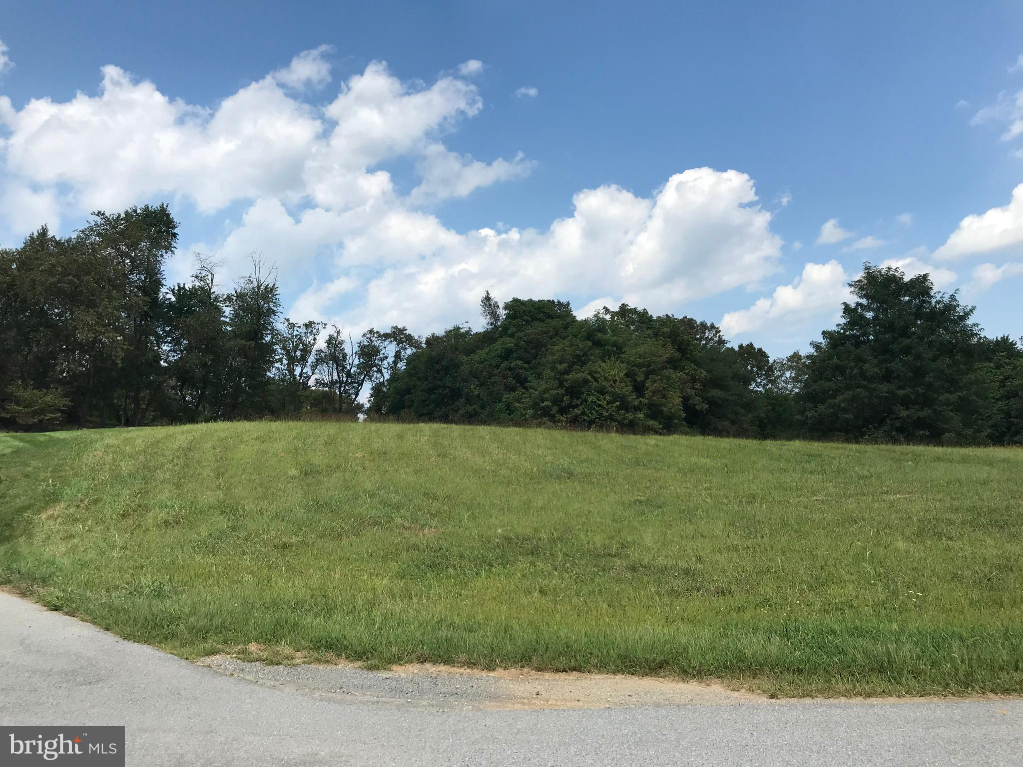 8325 PROPHET ACRES ROAD LOT 13, FAIRPLAY, MD 21733