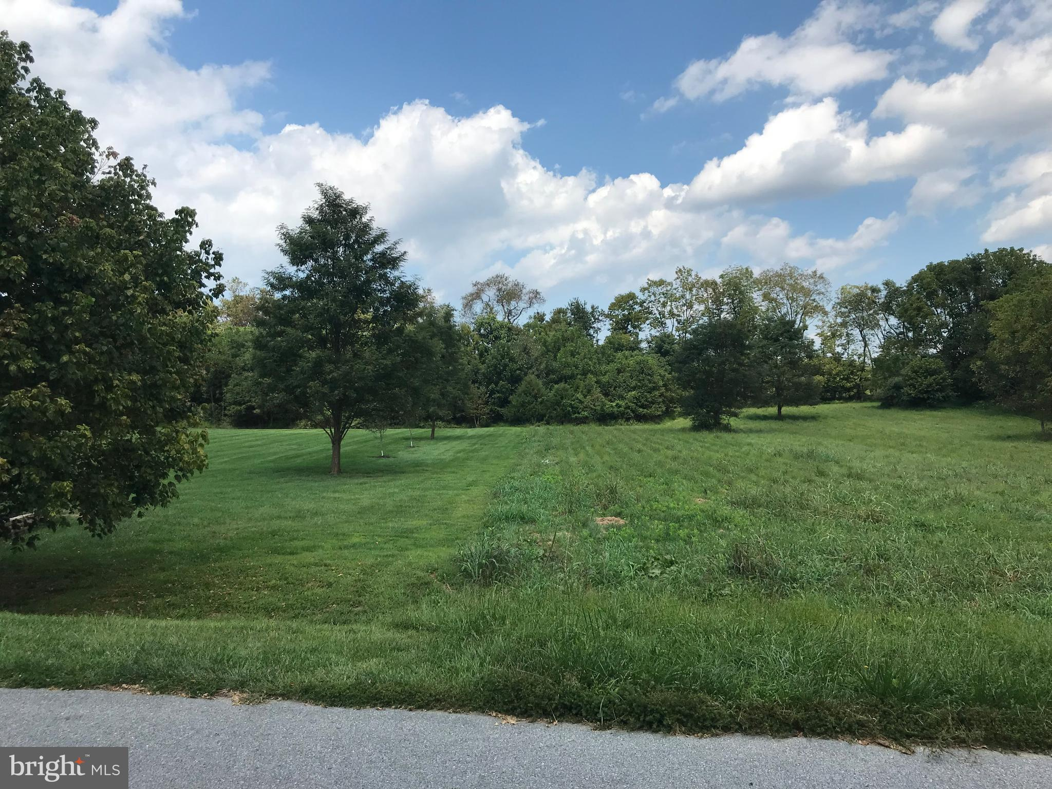 8317 PROPHET ACRES ROAD LOT 11, FAIRPLAY, MD 21733