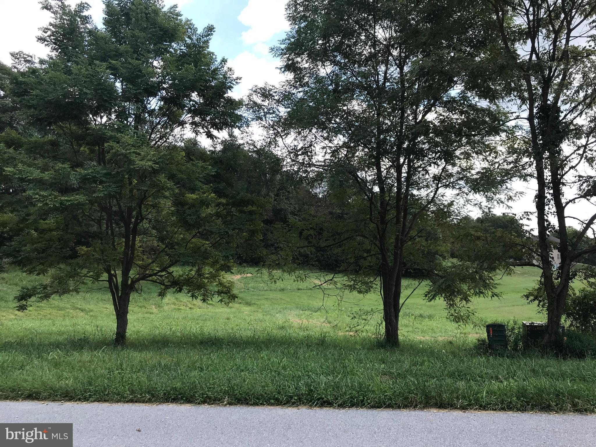 8211 PROPHET ACRES ROAD LOT 5, FAIRPLAY, MD 21733
