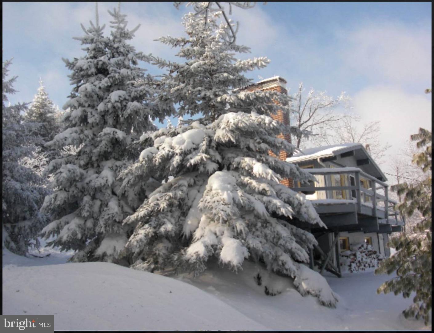 3 BIG SNOW LANE, CLAYSBURG, PA 16625